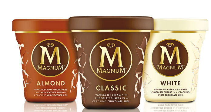 Magnum Algida pinta vari gusti 297/310 g