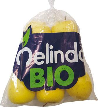 Mela Golden Melinda bio 1,2 KG  al kg