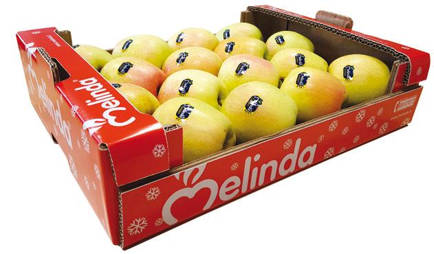 Mela Val di Non DOP Golden  Delicious Melinda 3Kg , al kg
