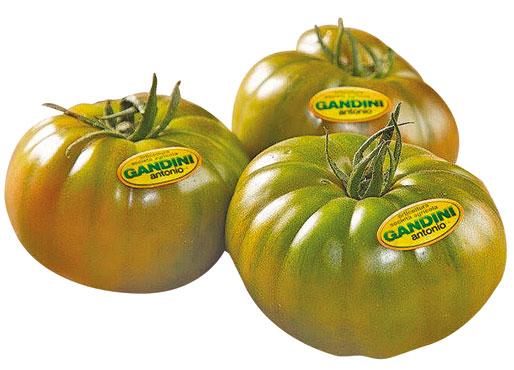 Pomodoro costoluto premium Gandini al kg