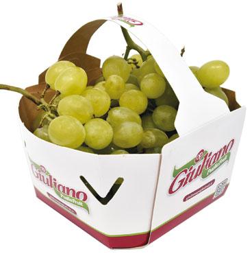 Uva  bianca Italia confezione 1,5 Kg, al kg