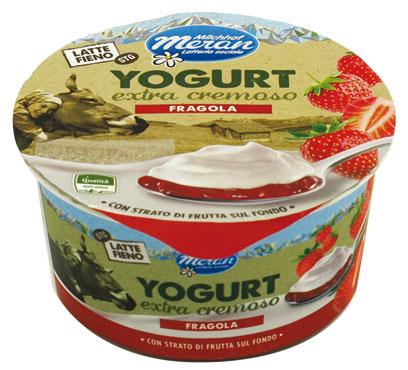 Yogurt latte/fieno bistrato Merano vari gusti 150 g