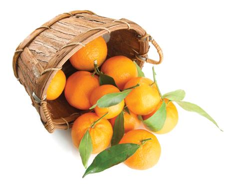 Clementine affogliate
