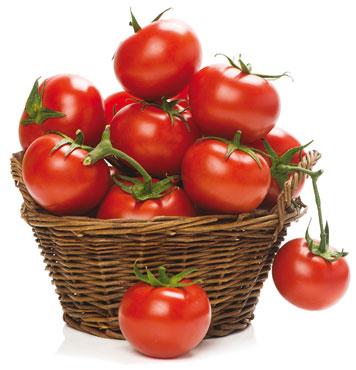 Pomodoro rosso grappolo Fresh Guru®al kg