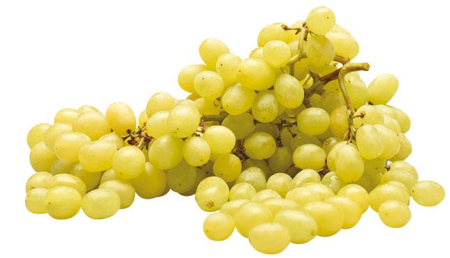 Uva bianca Pizzutella al kg