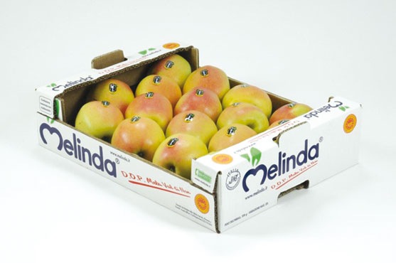 Mela Val di Non DOP Golden  Delicious Melinda 3Kg al kg